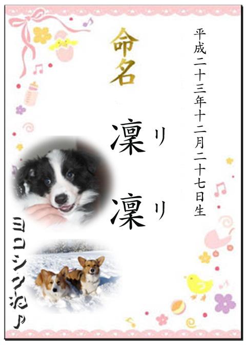 lili_meimei.jpg