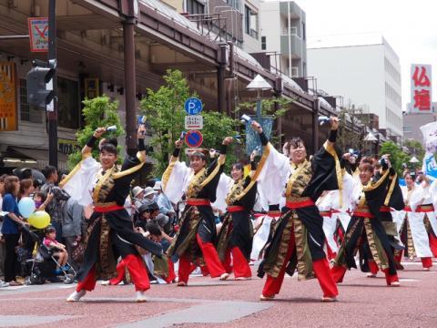 湘南よさこい2011