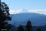景信山山頂6、富士山