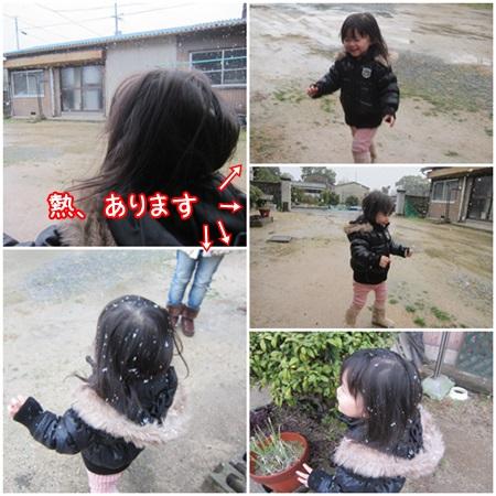 1220-01_20131220133453f7d.jpg