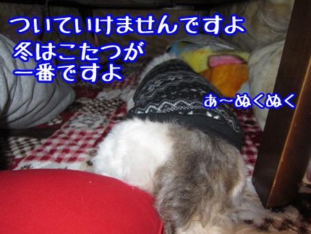 1220-02_201312201334546d9.jpg