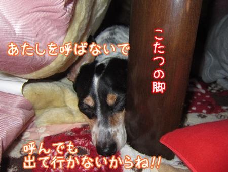 1220-03_2013122013345682e.jpg