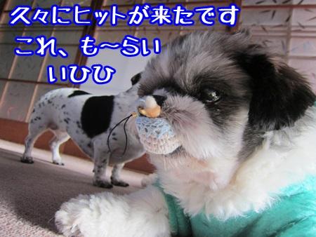 1224-13_2013122421521474b.jpg