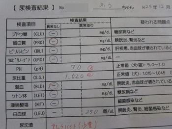 1226-検尿
