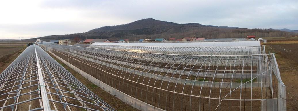20141112_15線農園