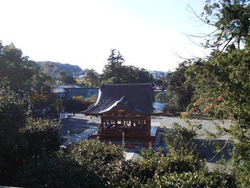 20141207_鶴岡八幡宮より