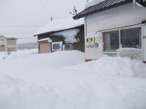 20141218_大雪8_移動は雪を漕いで