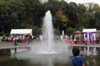 111103植物園⑰北山門前の噴水