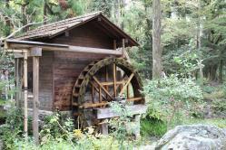 111103植物園⑯水車小屋