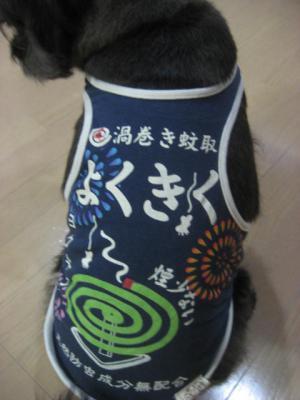 120624ふうたの服(よくきく蚊取り)