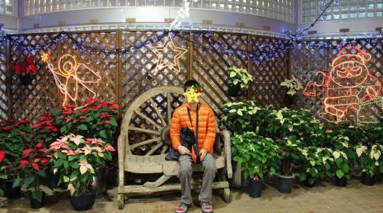 121125府立植物園23温室