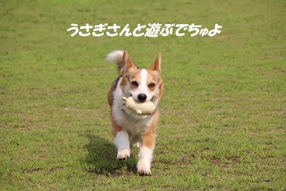 a_6710.jpg