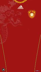11-12中国H