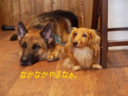 nakanaka_0919