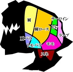 100927_01_squig.jpg