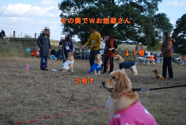 2013 11 23 3 (3)