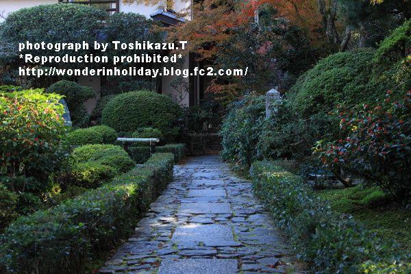IMG_0311s_20131204003830822.jpg