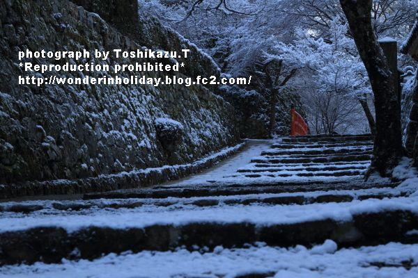 IMG_7746s_20131228213425f16.jpg