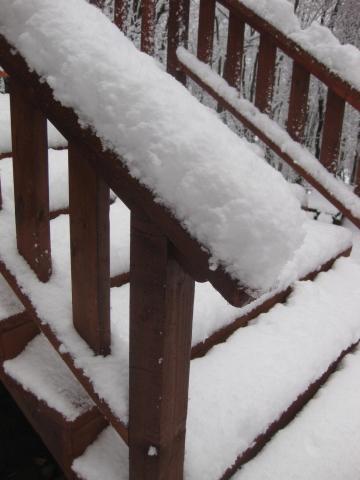 階段の雪1029