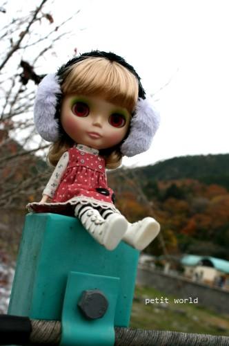 20101114_9999_20.jpg