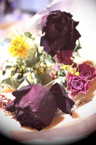 20110531_9999_11.jpg