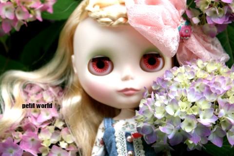 20110605_9999_10.jpg