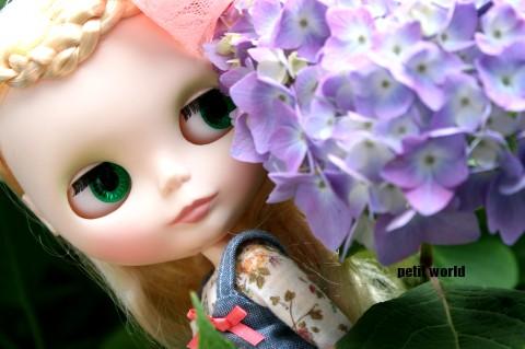 20110605_9999_15.jpg