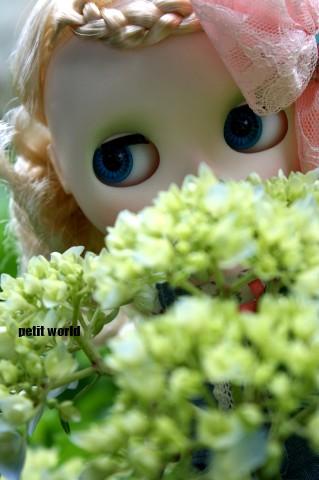 20110605_9999_8.jpg