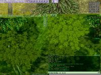 screenLif [Nor+Ver] 124