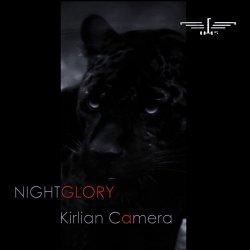 Nightglory.jpg