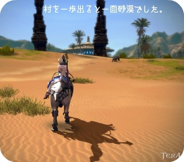 砂漠だ・・・