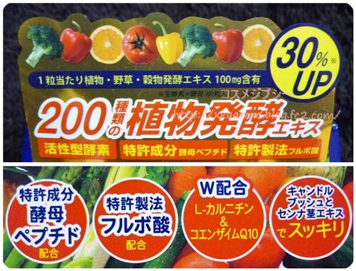 P1090312-vert.jpg