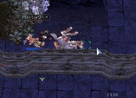 11_20101103194109.jpg