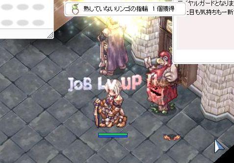 5_20101020095109.jpg