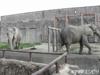 201008 東武動物公園 23
