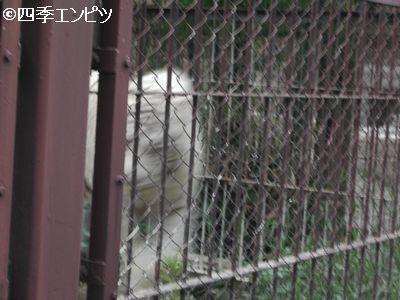 201008 東武動物公園 27