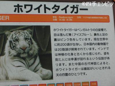 201008 東武動物公園 25.5