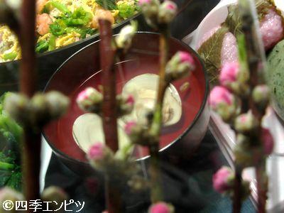 20110303 ひなまつり ももの花