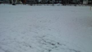 snow@20131228A.jpg