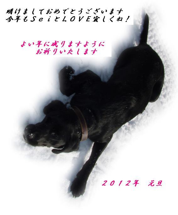 love_20120102153931.jpg