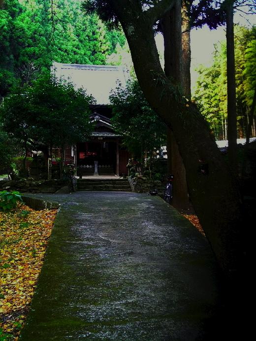 201112151.jpg