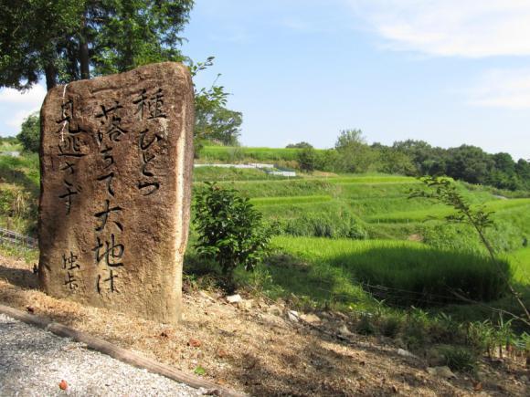風景にあった句碑
