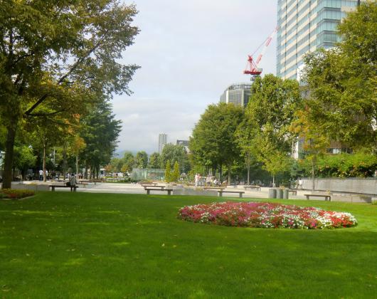 大通り公園(朝)
