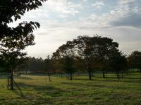 s秋の景色と富多小 004