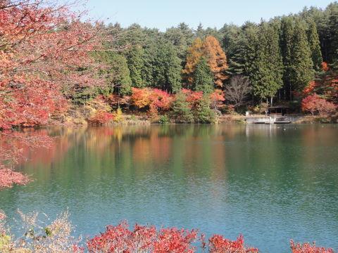 南伊奈ヶ湖 湖面