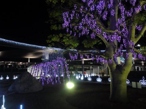 イルミ 竜王駅北口