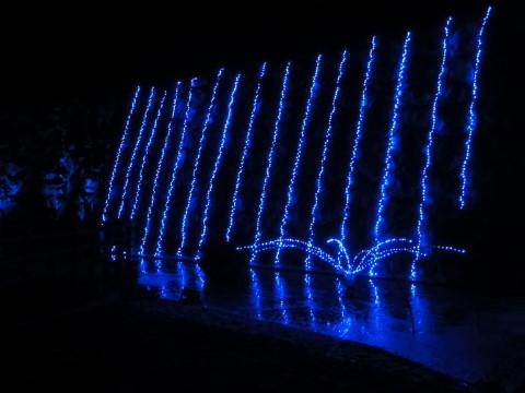 イルミ山中湖 イルミの滝