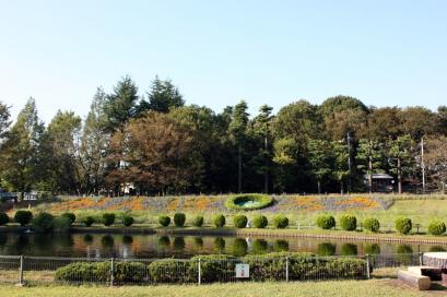 懐かしい公園♪3