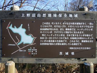 初めての上野沼♪6