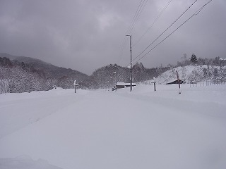 RIMG4384.jpg